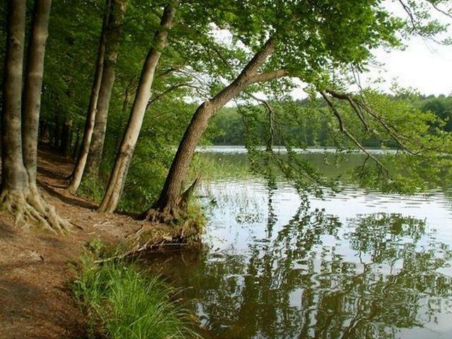 Naturpark Barnim, Foto: Archiv LUGV