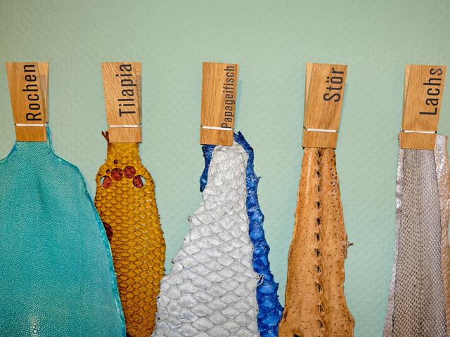 Fischleder Concept Store von Ramona Stelzer, Foto: Martin Flögel